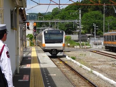 DSC00669_500.JPG