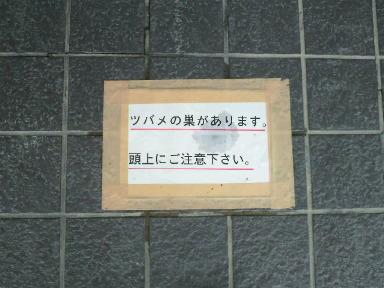 2010061107570000.jpg