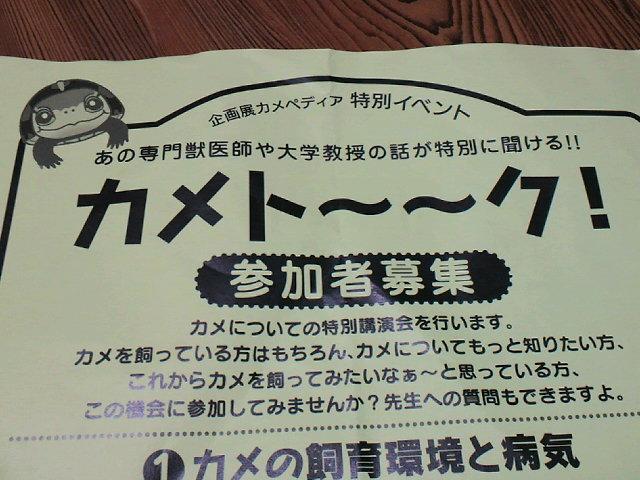 2011082820390000.jpg