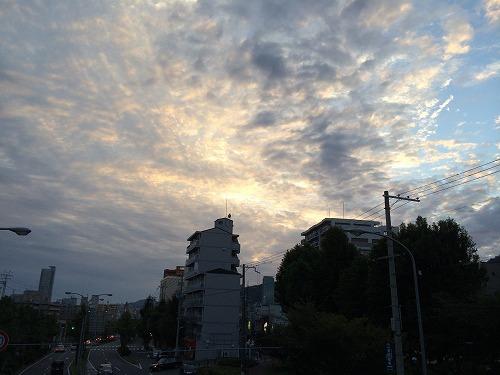 a-IMG_0269.jpg