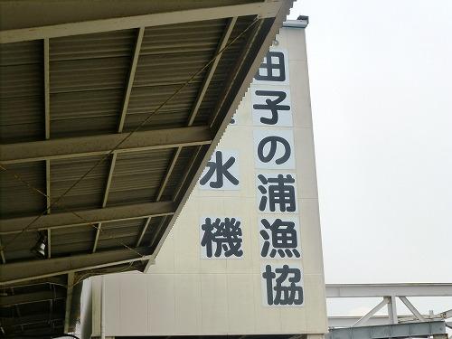 a-P1000941.jpg