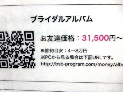 aP1070155.jpg