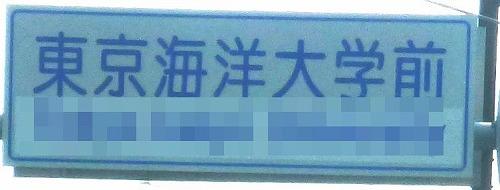 a-P1190553.jpg