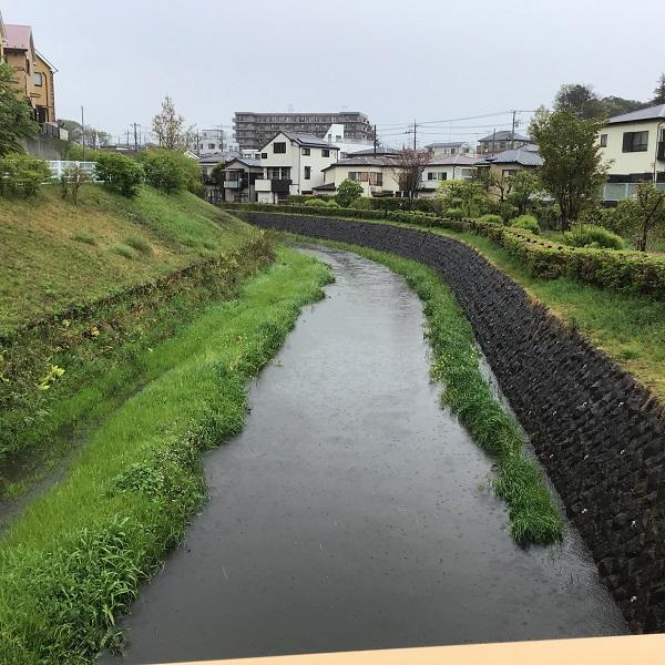 20200418_izumigawa.jpg