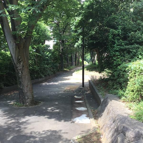20200905_akuwa_005.jpg