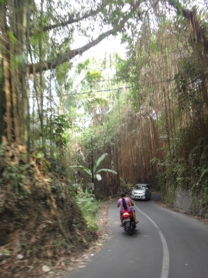 ウブドへの道
