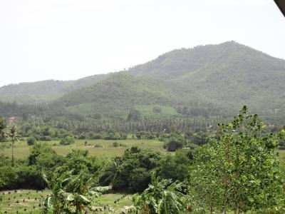 サムイ島山の景色