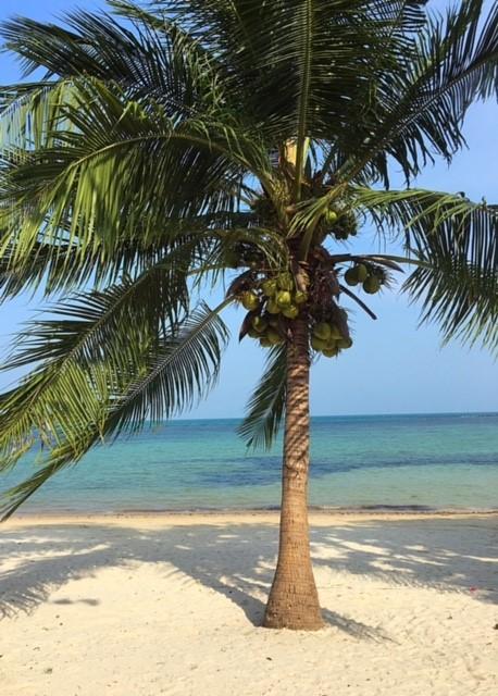 サムイ島チャウエンビーチ