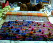 咲き織り画像
