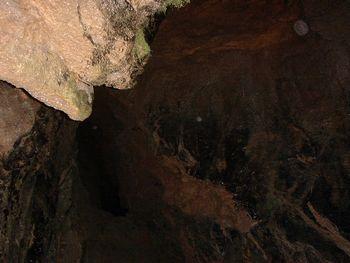 牡鹿洞内部