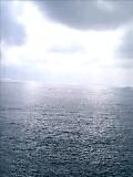 20070317_315111.jpg