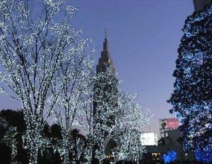 クリスマスの光