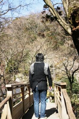 明月院には木の橋があります