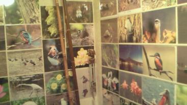 化粧室の写真