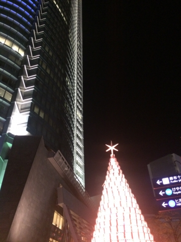 IMG_9405★.JPG