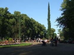 エスプラナーディ公園2