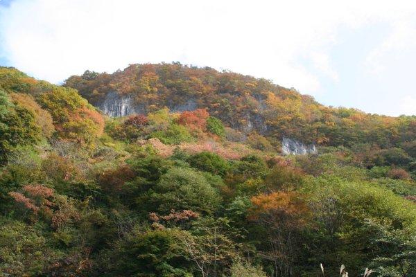 かえる岩紅葉2