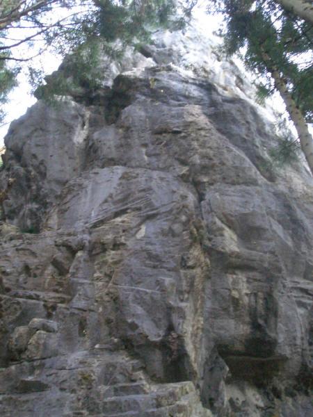 川乗谷 ヤマネの塔