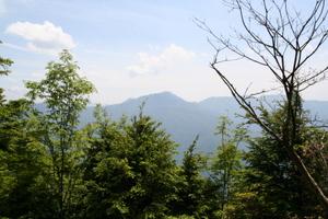 白岩山付近1 06-17-2007