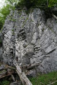 途中の石灰岩の岩場 06-17-2007