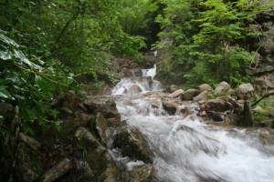増水した沢 07-16-2007
