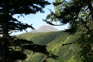三伏峠近くからの塩見岳