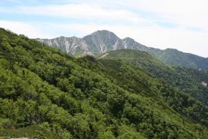 仙塩尾根から塩見岳