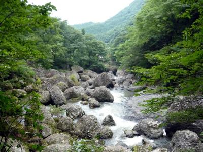 袋田の滝 滝川
