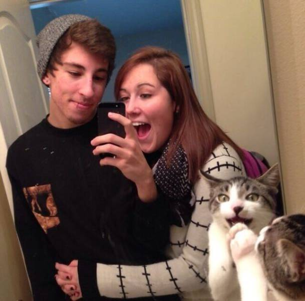 these_kitties_think_photobombs_need_to_be_renamed_into_photocats_640_04.jpg