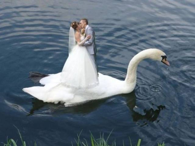 wedding_photos_cant_be_this_bad_but_in_russia_640_05.jpg