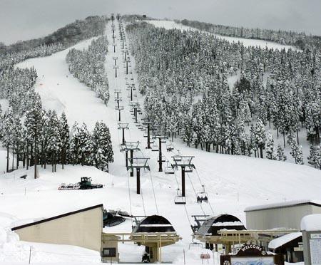 スキージャム勝山イリュージョン