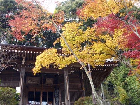花の寺13