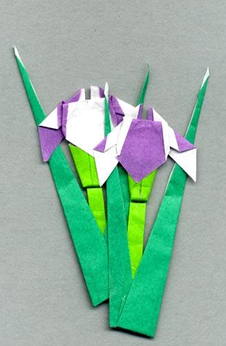 ハート 折り紙 折り紙 あやめの折り方 : blog.kogayabungu.jp