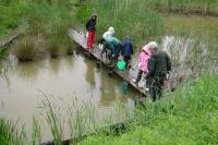 新曽柳原調節池でザリガニ釣りなどしている