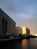 雨上がりに虹が