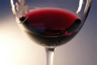 ボジョレ・ヌーボ2009、新酒の輝き。