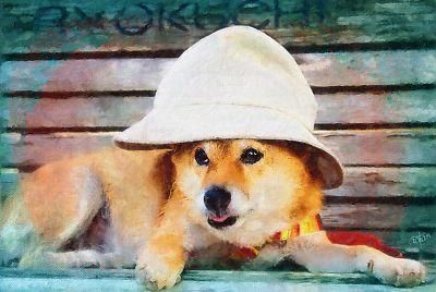 本当に 帽子 よく 似合ってる ?