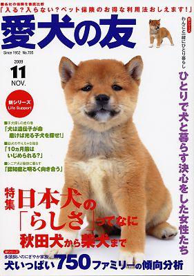 「 愛犬の友 」 11月号表紙
