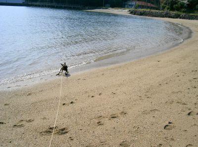 砂浜で散歩
