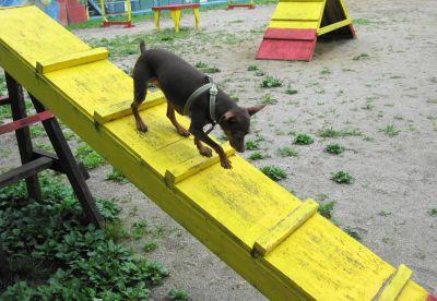 階段も難なく