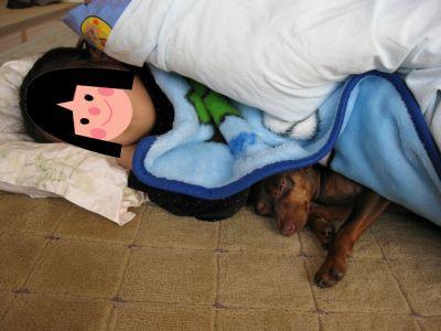 子供の添い寝