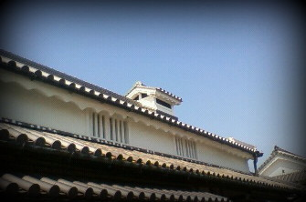 杉田医院2