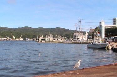 気仙沼港3