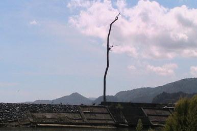陸前高田9