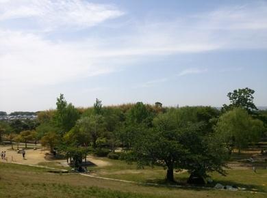 竹取公園3