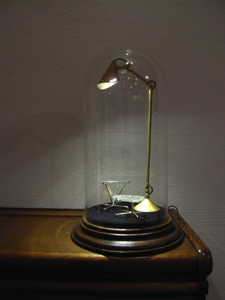 Glass Dome Display Case & Lamp