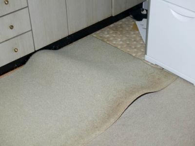 絨毯にふくらみが