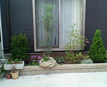 最近の花壇