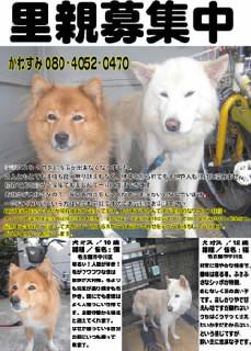 ファイル0043.jpg