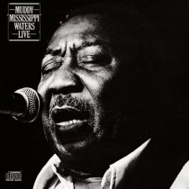 muddy waters_Mississippi live.jpg